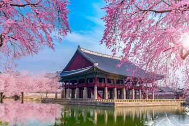 5 Khách sạn đẹp cho du lịch Hàn Quốc tự túc giá rẻ