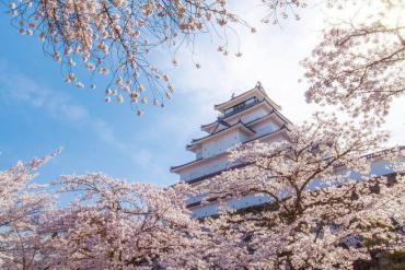 Lạc giữa mùa hoa xuân trên cung đường kim cương Nhật Bản