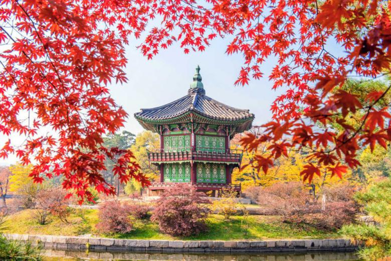 Tour Du Lịch: Hàn Quốc - Seoul - Nami - Everland